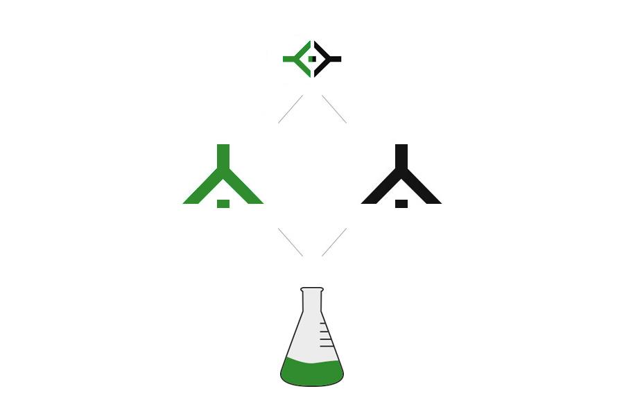 diseño grafico  Diseño de logotipo     5