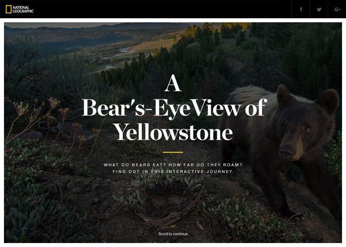 mejores diseños web 2016-2017