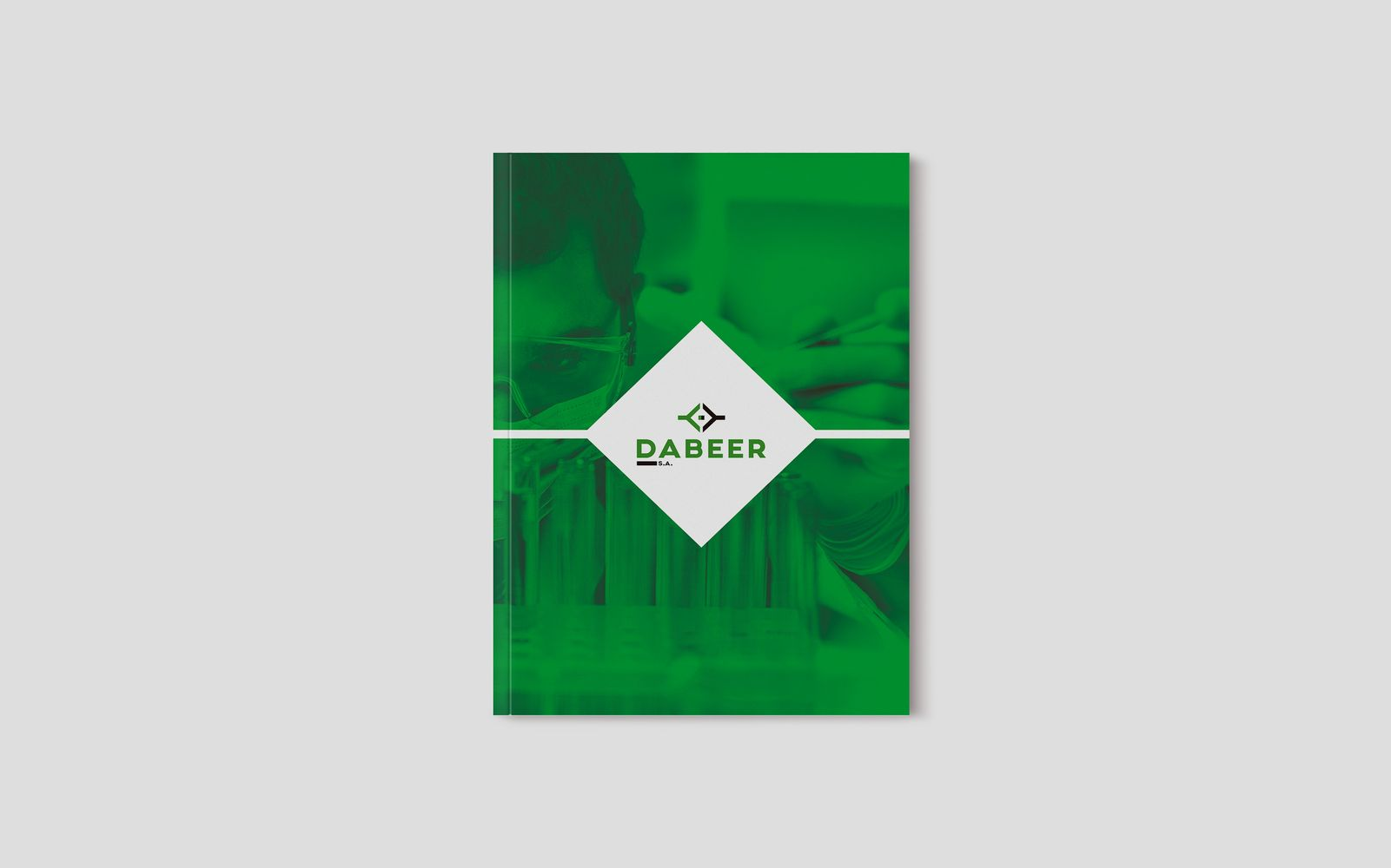 diseño grafico  Catálogo corporativo     3