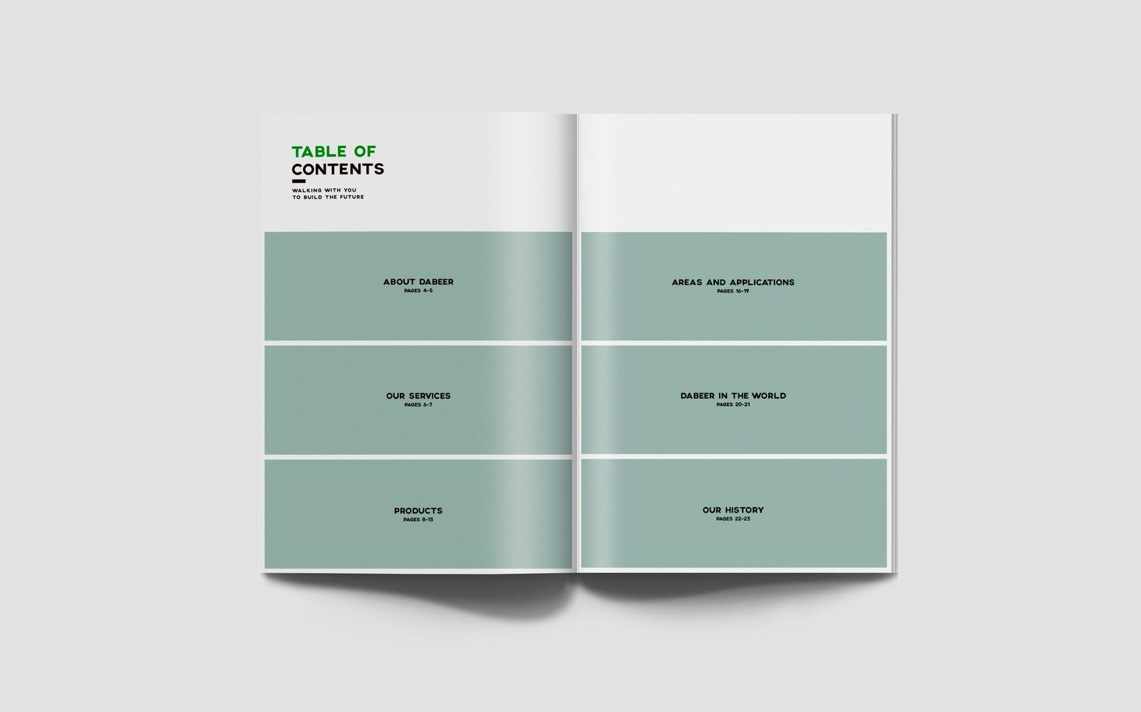 diseño grafico  Catálogo corporativo     4