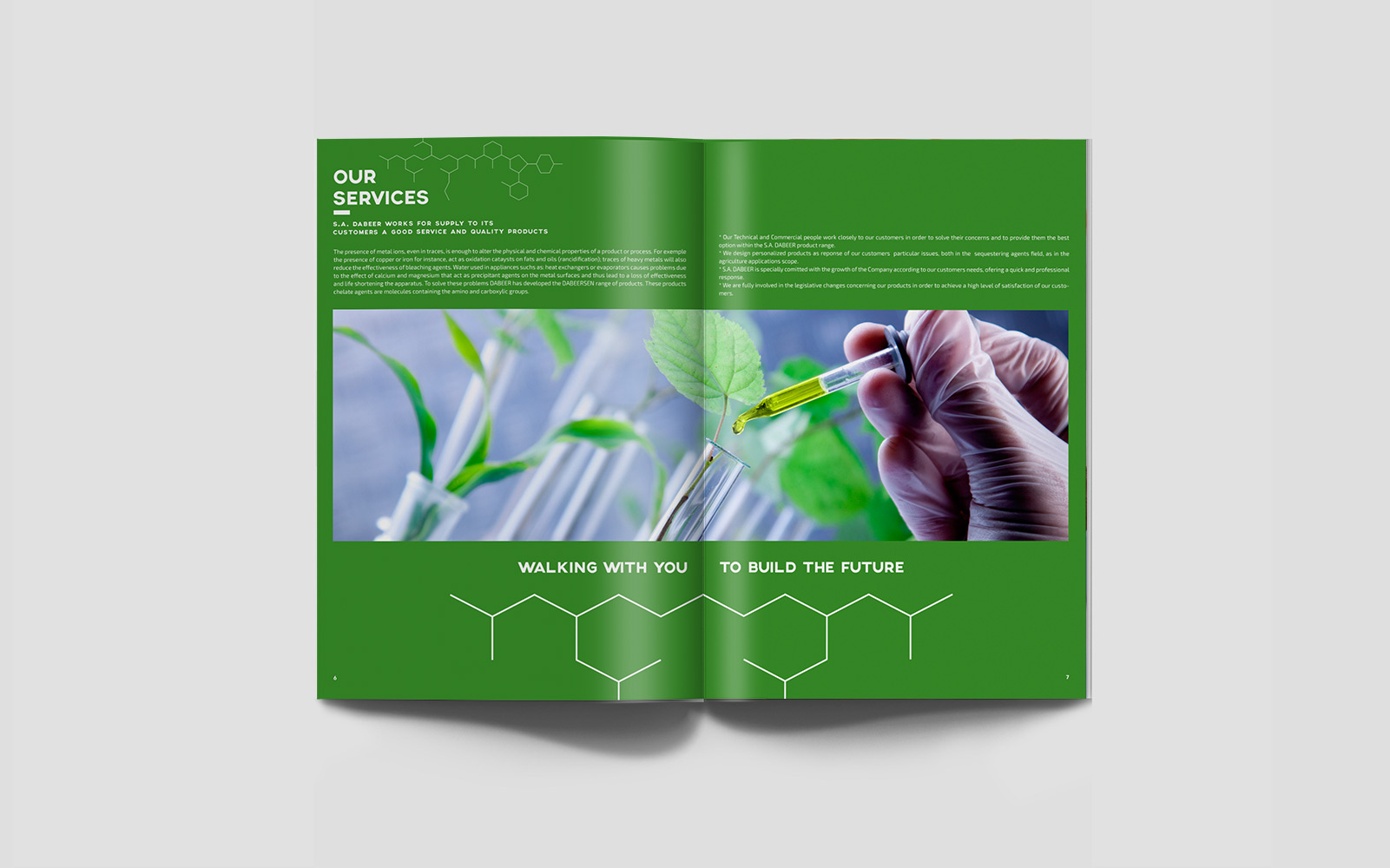 diseño grafico  Catálogo corporativo     6