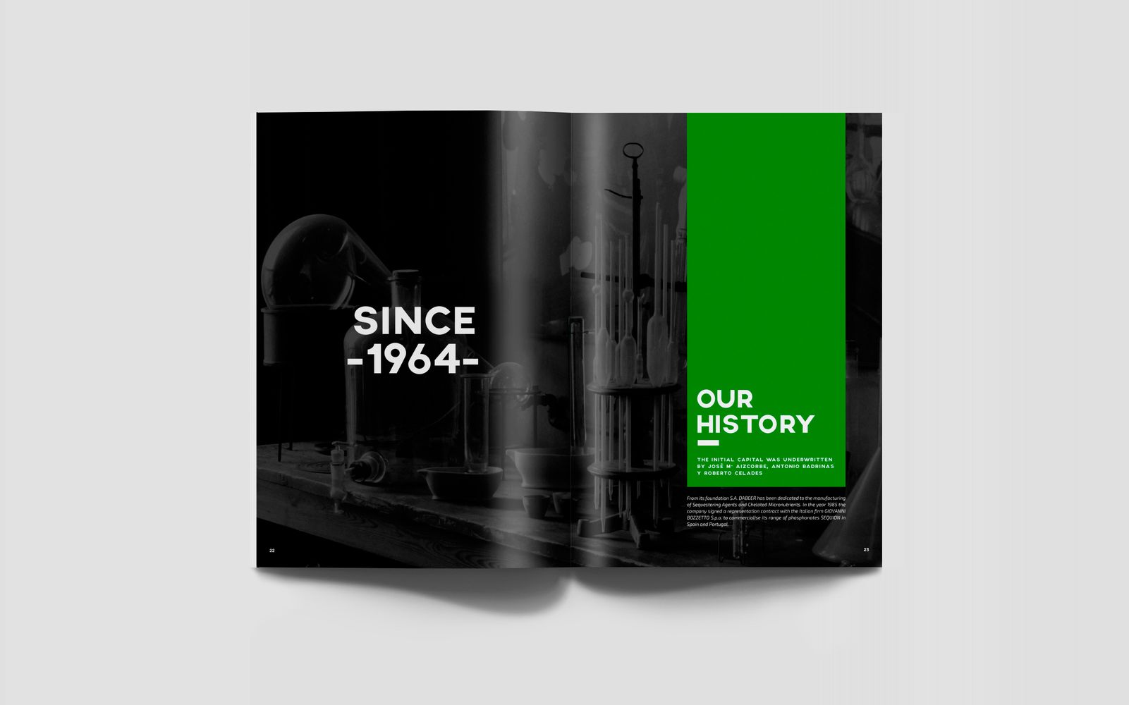 diseño grafico  Catálogo corporativo     11