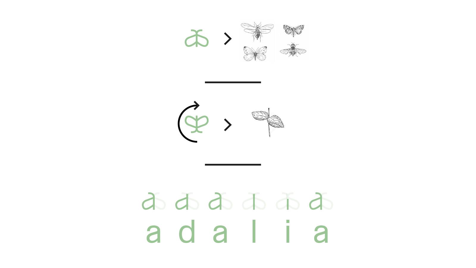 diseño grafico  Diseño de logo y tarjetas     4