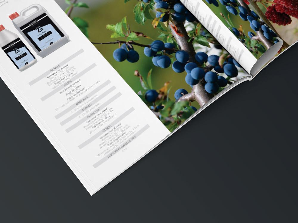 diseño grafico  catálogo de producto     5