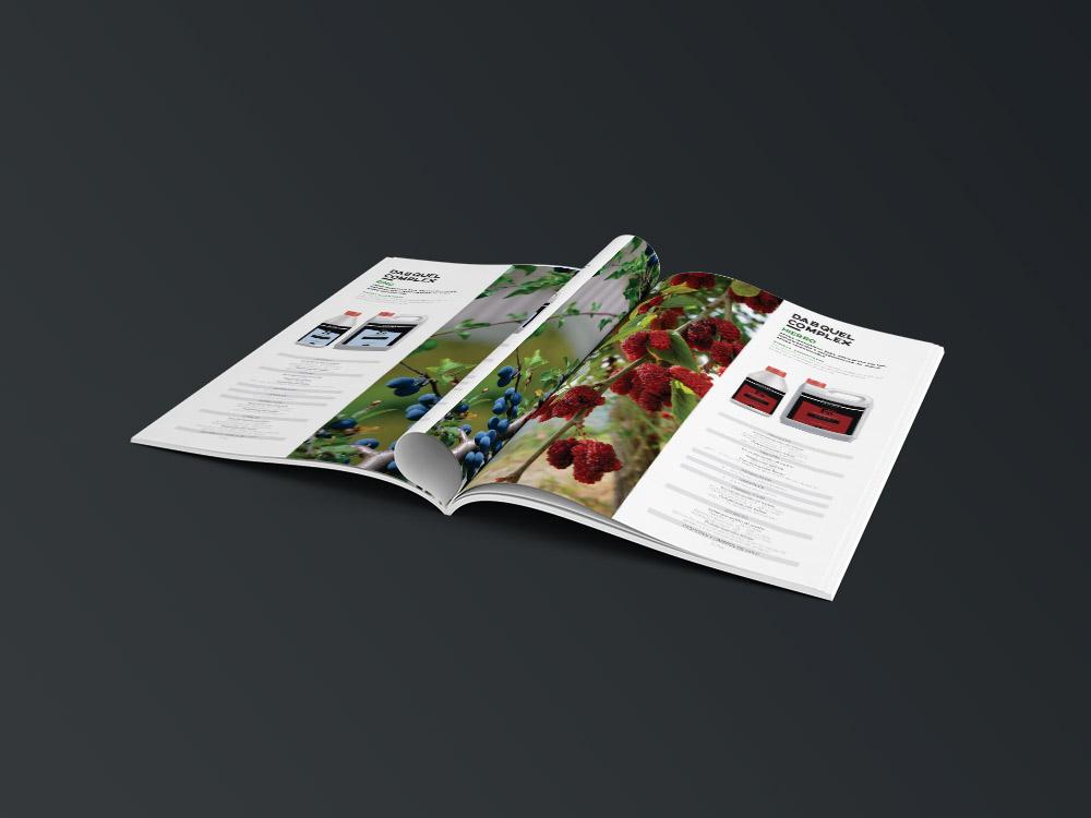 diseño grafico  catálogo de producto     6
