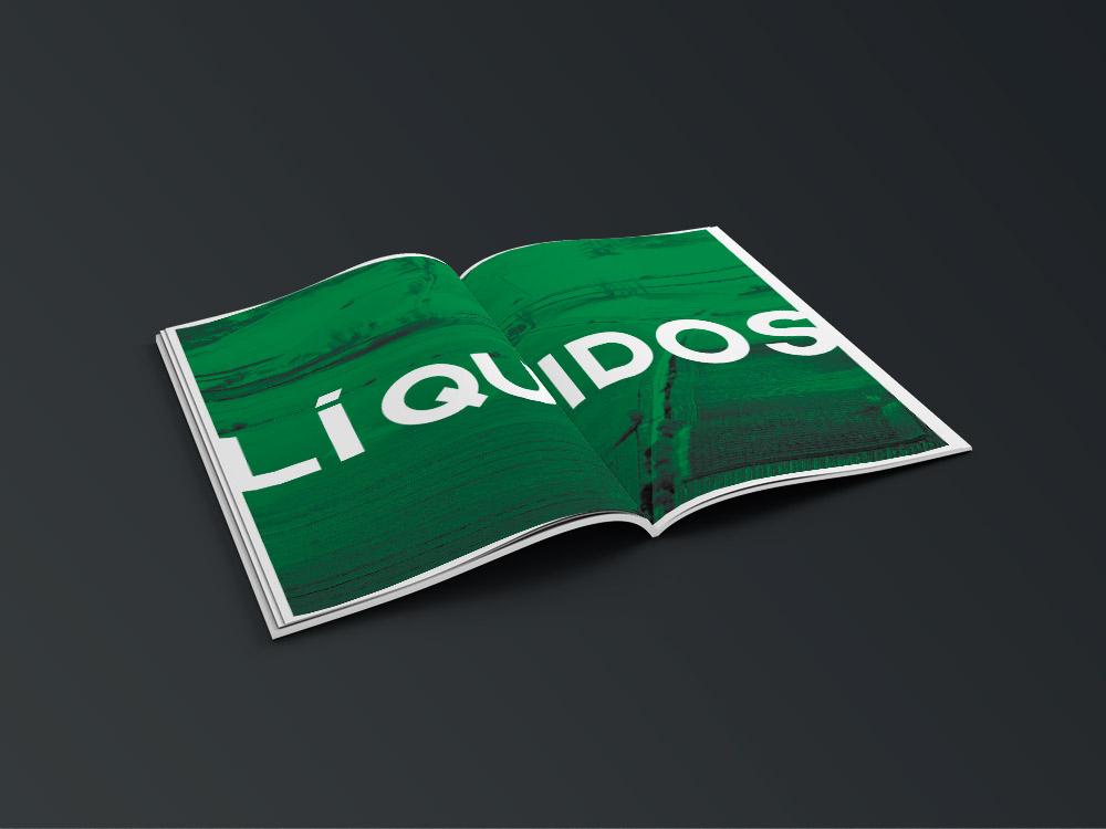 diseño grafico  catálogo de producto     10