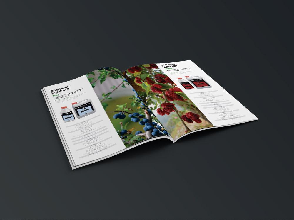diseño grafico  catálogo de producto     4